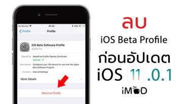 Ios11 0 1 Beta Profile