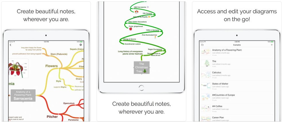 Mind Map Diagram App Coggle 1