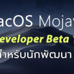 Macos Mojave Developer Beta 10 Seed