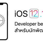 Ios 12 1 1 Developer Beta 2