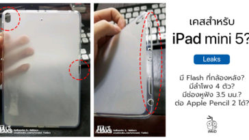 Ipad Mini 5 Case Leaks Photo Cover 2