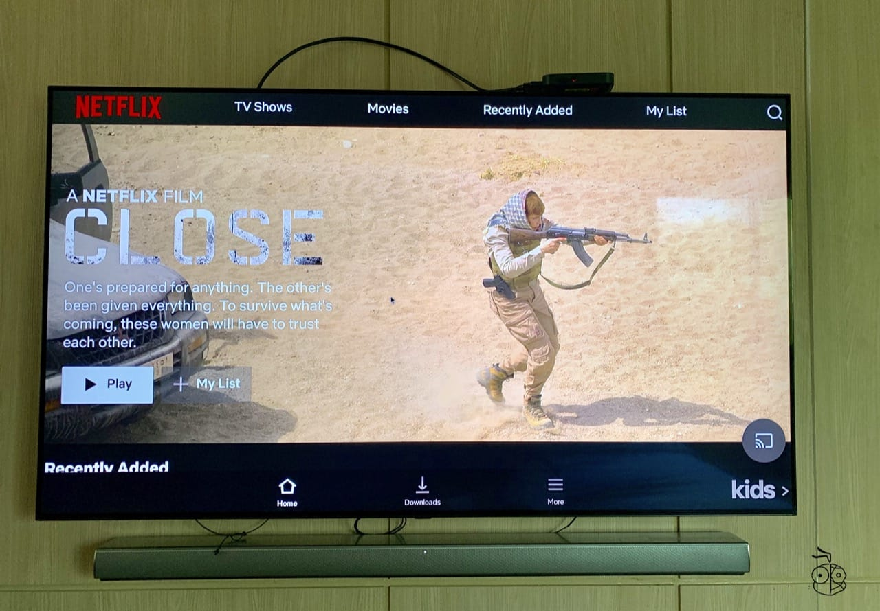 Trueid Tv Netflix Installed