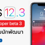 Ios 12 3 Developer Beta 3 Seed