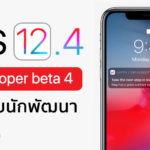 Ios 12 4 Developer Beta 4 Seed